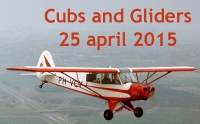 Cubs and Gliders 25 april 2015