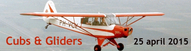 Cubs_Gliders_banner_post